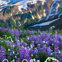 Test HTC One max ecran verouillage
