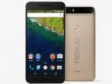 Photo : Nexus 6P