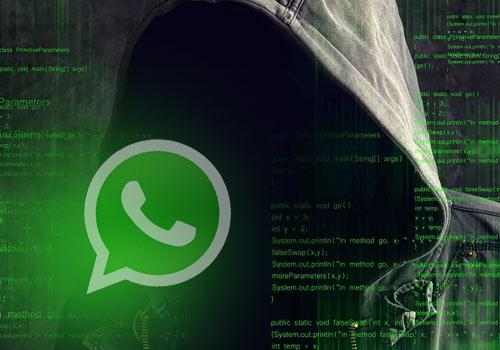 whatsapp pirate